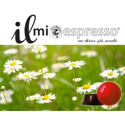 10 Compatibili A Modo Mio Camomilla Solubile Il Mio Espresso